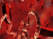 ¡Por fin! vacuna contra Ébola está lista funciona!