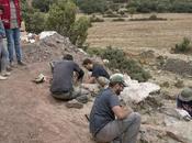 Encontrados restos fósiles dinosaurios terreno destinado huertos urbanos Montequinto