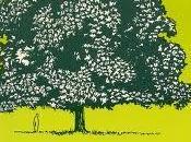 Deodendron: arboles arbustos jardin clima templado (libro recomendado)