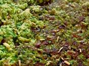 Hamburguesas brocoli, espinacas pollo