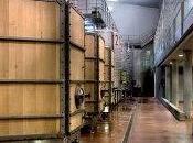 Bodega Valbusenda: Vinos destacan calidad elegancia sensaciones