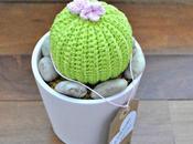 Cactus ganchillo flor