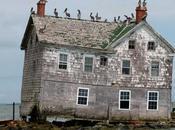 Arquitecturas olvidadas: última casa isla holland