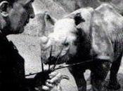 Salvador Dalí: hombre veía rinocerontes