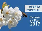 OFERTA Cerezo Flor 2017 para grupos. Valle Jerte