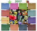 Calendario 2017 sbv_bdv