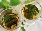 mejores plantas depurativas para organismo