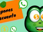 tipos bulos comunes circulan WhatsApp