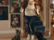 Gatos montados Roombas otros memes protagonizan este anuncio GoDaddy