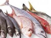 Febrero pescados temporada