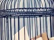 formas diferentes decorar jaulas