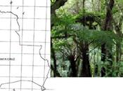 Reserva Natural Tariquía Peligro