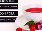 Crea Paletas Colores Pixlr