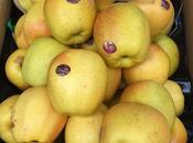Manzanas golden rose perlim