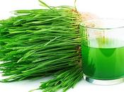 Verde quiero verde ¿por importante?
