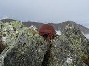 Pico Castillo, Rozada Sierra Begega: Ruta desde Alvariza