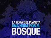 Este marzo Hora Planeta Chile será también hora bosque