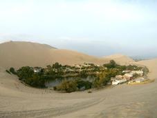 Visitar Oasis Huacachina. Buggies sandboard Ica, Perú