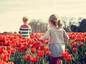 Consejos para fotografiar primavera