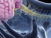 Presentan nuevos avances para tratar enfermedades psiquiátricas