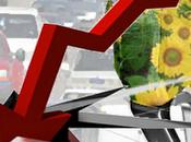 hunde sector biocombustibles España
