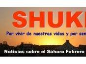 Noticias sobre Sáhara, febrero 2011