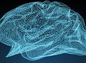 cerebro personas TDAH sufrirían retraso proceso maduración
