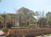 Hotel guadalmina golf, hotel viejenial