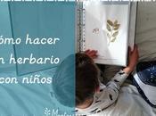 Cómo hacer herbario niños Making herbarium with kids