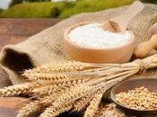 ¿Qué mejoradores harinas?