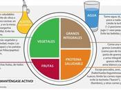 plate vegetariano vegano