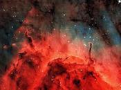 Nebulosa Pelícano