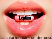 Leptina ¿Una hormona para adelgazar?