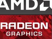 Hasta luego Radeon. Utilizarte nunca buena idea.