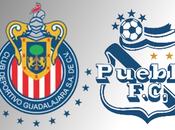 Pronósticos Guadalajara Puebla jornada futbol mexicano