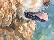 TRAVÉS PEQUEÑOS OJOS: vida perro guía contada mismo