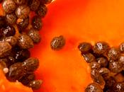Cómo desinflamar vientre adelgazar días papaya