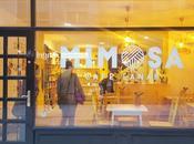 ESPACIOS ENCANTO: Mimosa Café Lanar