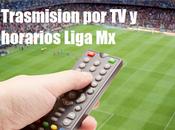 Calendario Programacion jornada futbol mexicano