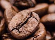 favoritos: Mascarilla café