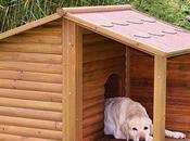 Cómo realizar caseta madera para mascota