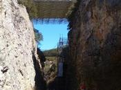 Atapuerca, Alubias Juarros, Salas Infantes, Árbol fósil Matalaguna Costalomo