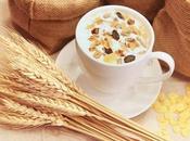 verdad sobre carbohidratos dieta