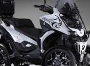 scooter ruedas? QUADRO4 Steinbock