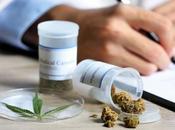 Diputados legalizan marihuana medicinal México