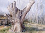 Árboles. Texturas acuarela