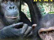 """Conferencia """"los grandes simios patrimonio humanidad"""""""