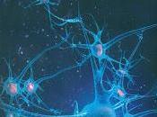 Inteligencia Artificial: todo mundo debe saber