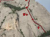 escalando Montserrat, Funcio Clorofílica