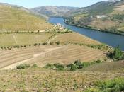 QUINTA CRASTO, Valle Douro